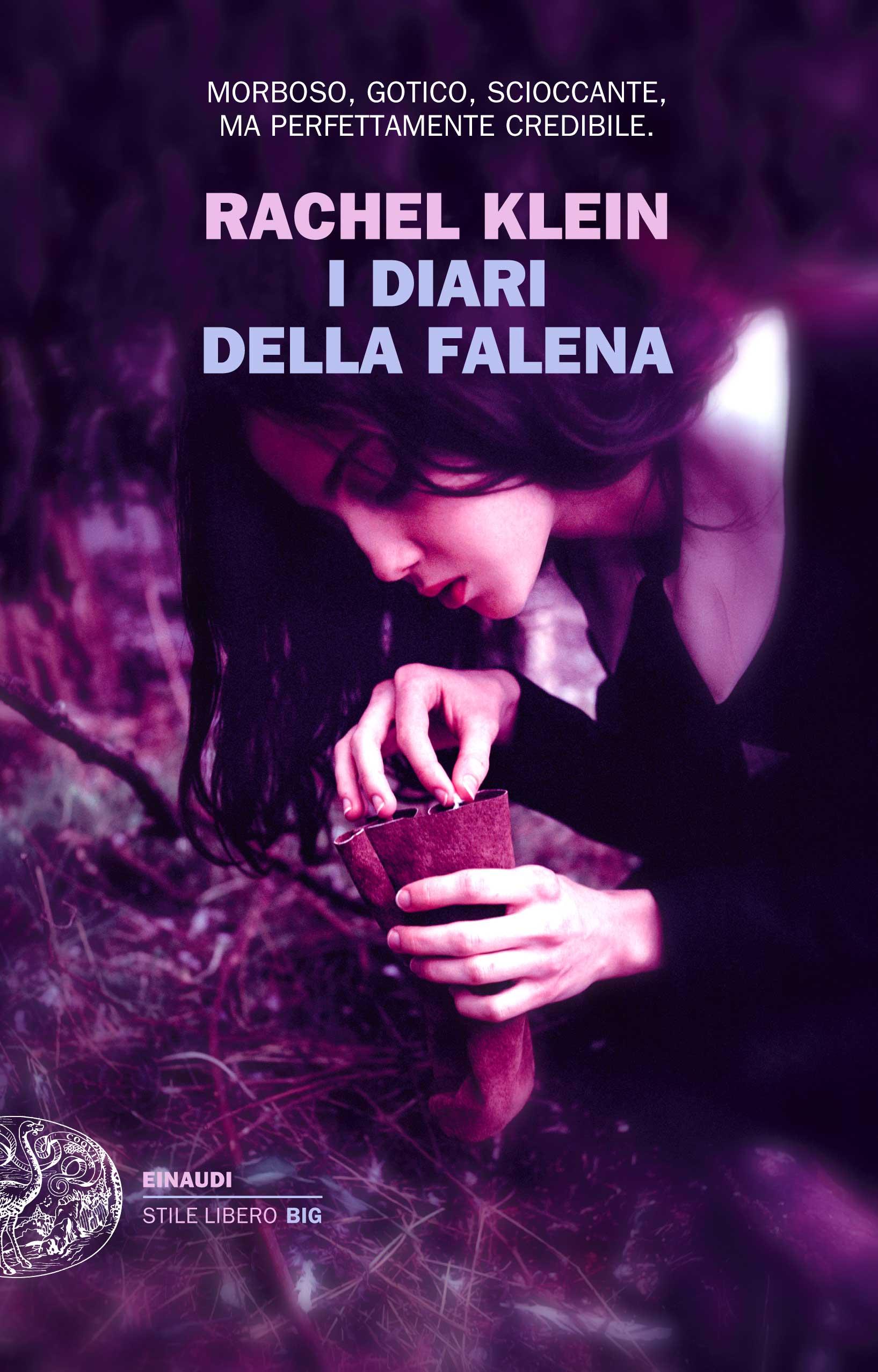 KLEIN_DiariFalena_cover